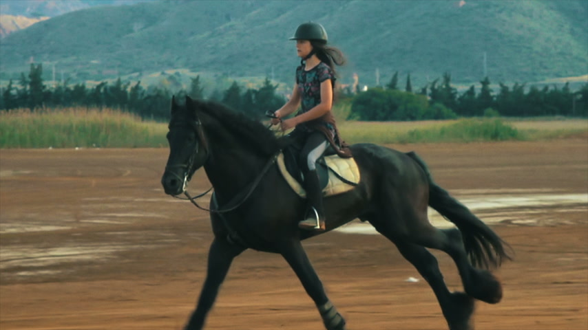 horse riding : Girl galloping on a horse, a frisian stallion in Spain. Stock Footage