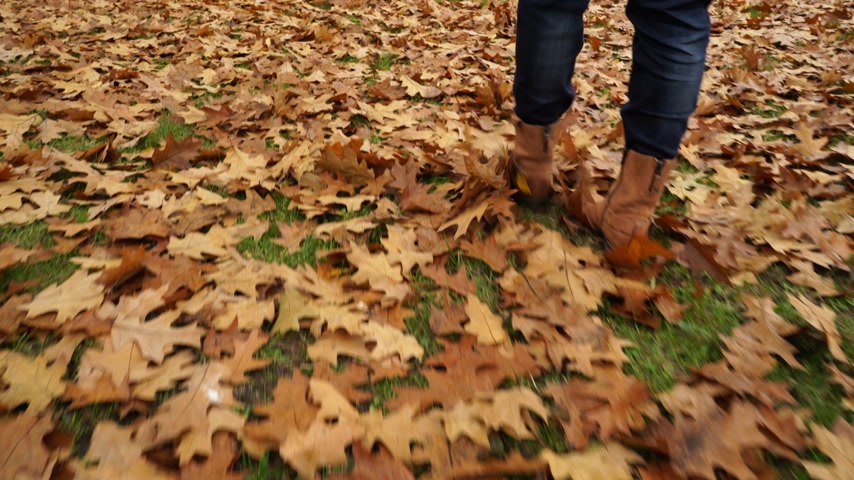 trousers : Woman walking on autumn fall grass and leaves. Closeup of female legs in brown shoes boots. 4K steadicam shot ProRes HQ codec.