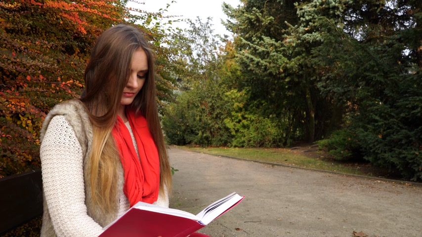 őszies : Woman fashion girl relaxing in autumnal park reading book sitting on bench. Fall lifestyle concept. 4K ProRes HQ codec Stock mozgókép