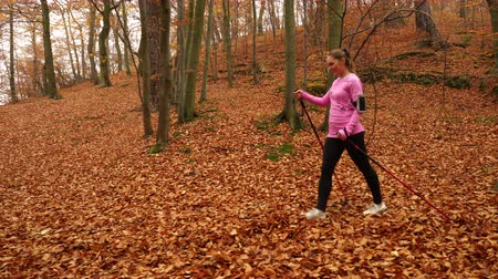 blood sport : Woman doing nordic walking in autumn park forest with smartphone app. Active girl with activity tracker armband. Fitness technology. 4K steadicam shot ProRes HQ codec.