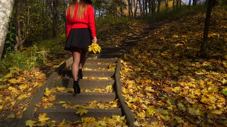 pięta : Woman girl walking on stairs in autumn park forest. 4K ProRes HQ codec. Wideo