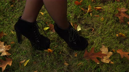 külotlu çorap : Woman legs in black pantyhose and stylish fashionable high heels shoes outdoor in park walking on fallen oak leaves. Autumn fashion. 4K steadicam shot ProRes HQ codec