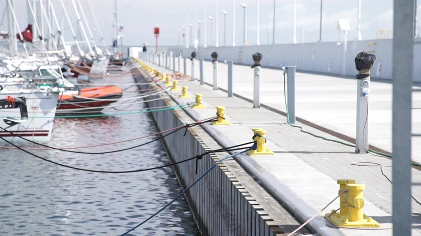 Dating. Young woman and man walking in love at marina port at sunny spring day. Back view Wideo