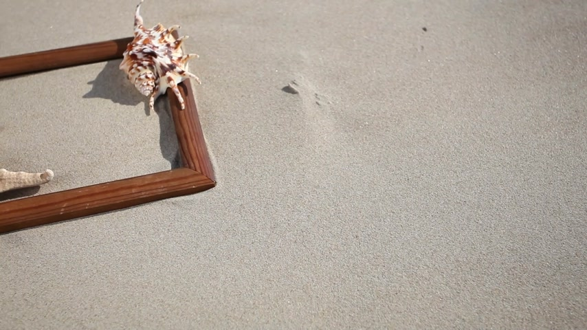 etoile de mer : Wooden frame border blank copy space with seashell, starfish and sunglasses on the sandy beach. Summer vacation. Full HD with motorized slider.