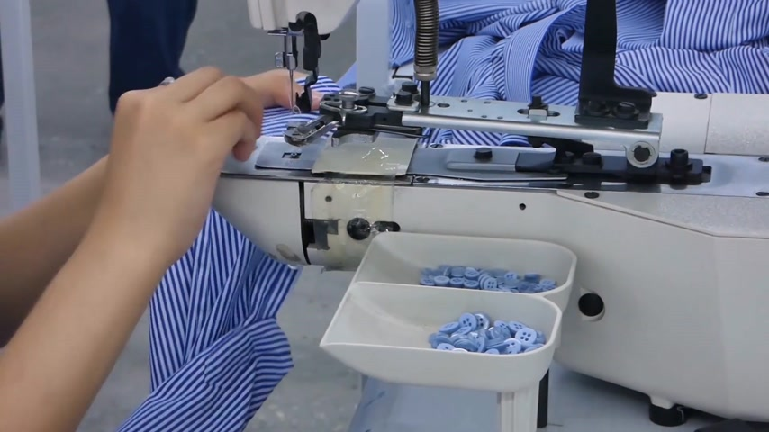 candida : the woman in the workshop sews buttons to the shirt