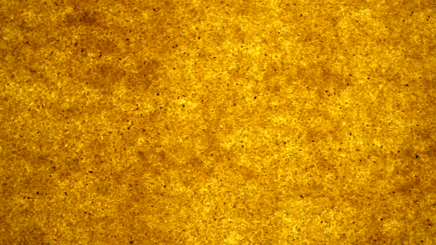 粒状 : bright background of golden sand granules. backlit background. offset effect