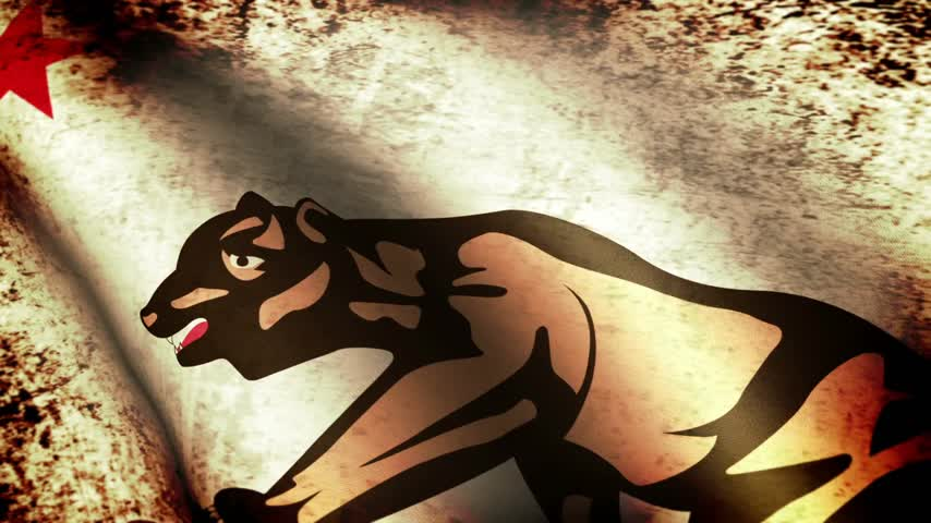 devletler : California State Flag Waving, grunge look