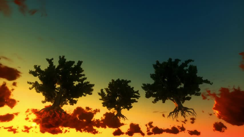 dub : Floating trees and time lapse clouds, sunrise