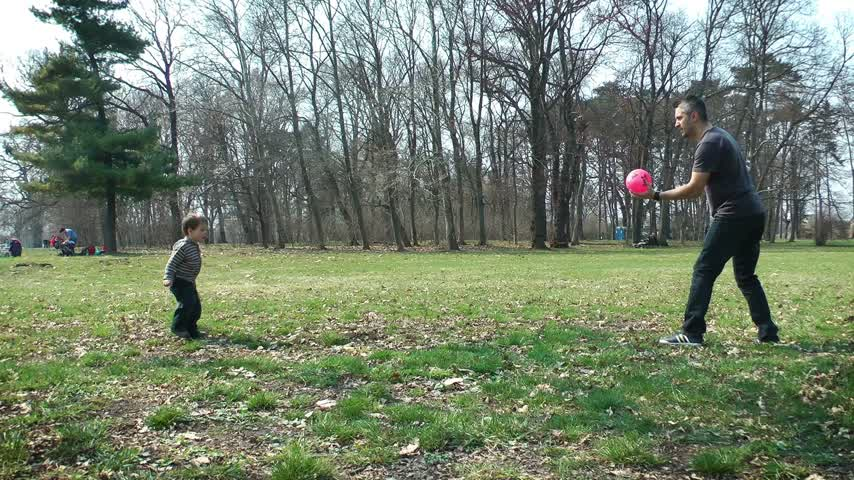гордый : Father and son playing football in the park