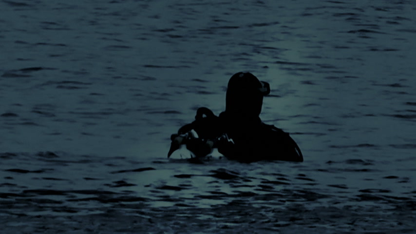 donanma : Navy Seals Diver in the night, moonlight reflection on the water