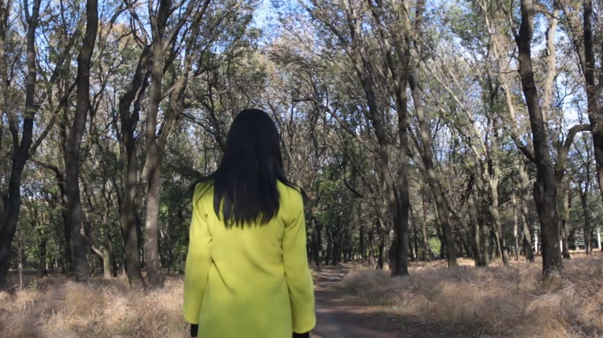 vad : Beautiful slender girl in coat with long hair, walking in the park