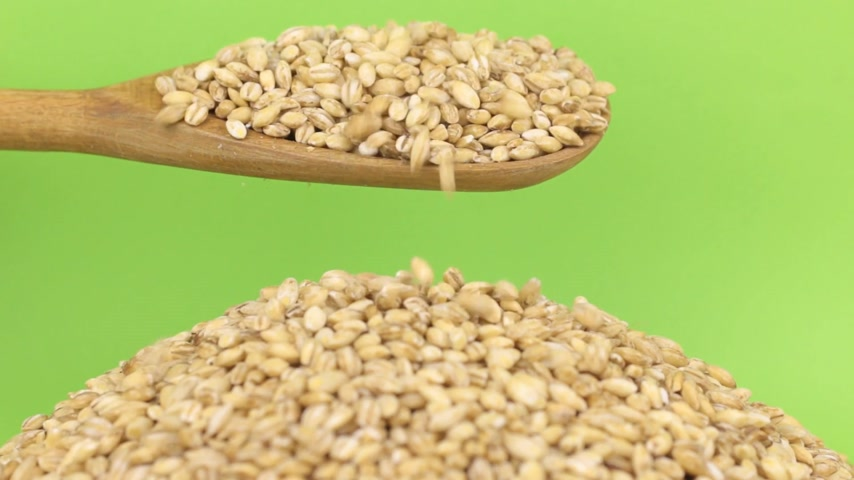 peeled grains : Wooden spoon pours grains pearl barley at heap of pearl barley on a green screen