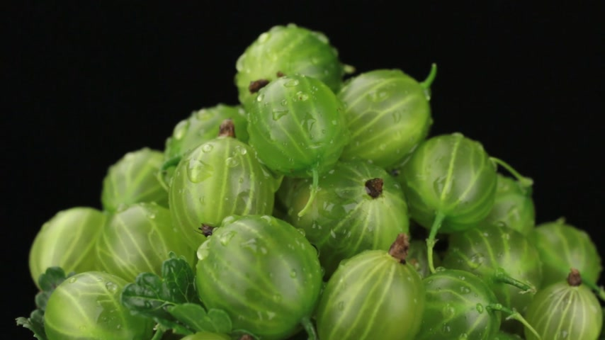 agrest : Close-up of rotation of a heap of ripe green gooseberry.