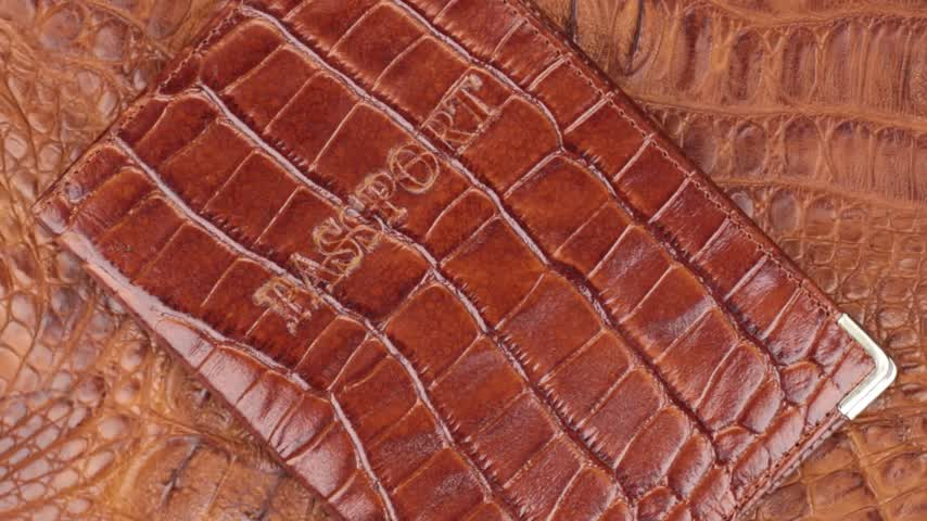 skin brown : Rotation, close-up brown cover for passport, lying on brown crocodile skin. Stock Footage