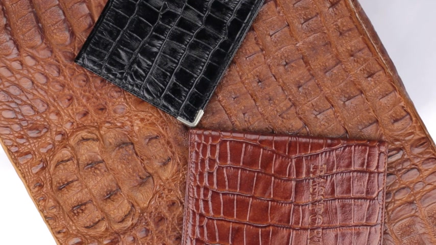 jaszczurka : Rotation, close-up two passports, lying on brown crocodile skin.