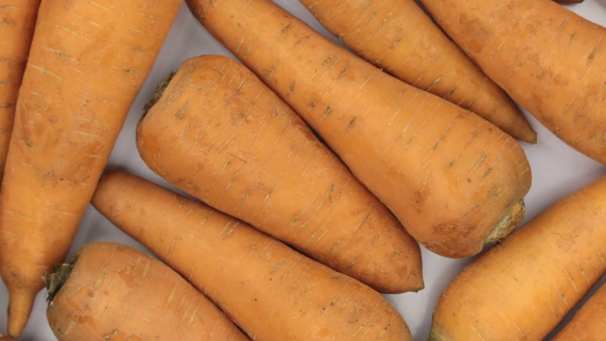 ルーツ : Rotation close-up, background of carrots. 動画素材