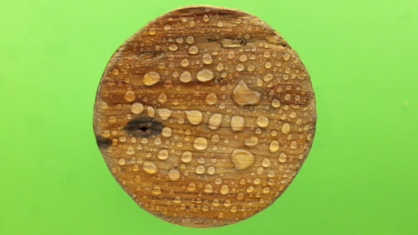 keying : Wind blows on raindrops on a round wooden board. Isolated on green background.