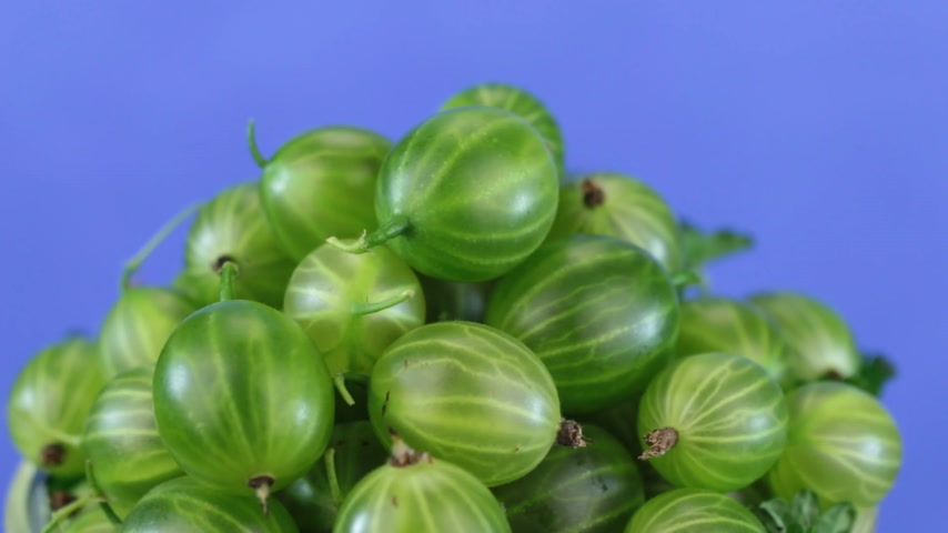 agrest : Rotation of a heap of ripe juicy green gooseberries isolated Wideo