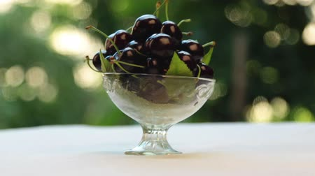 aproximação : Approximation, sweet cherry in a glass vase, fruit in a vase, with beautiful blurred garden trees.