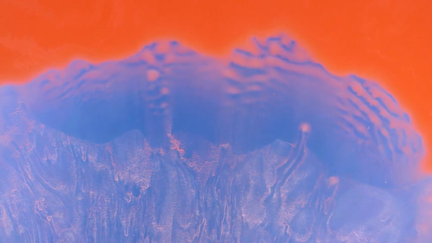 pigmento : Red paint flows smoothly closing blue background. View from above.