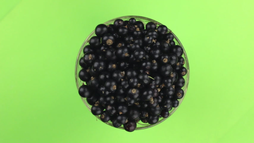 смородина : Top view, rotation of heap of ripe juicy black currants. Isolated.