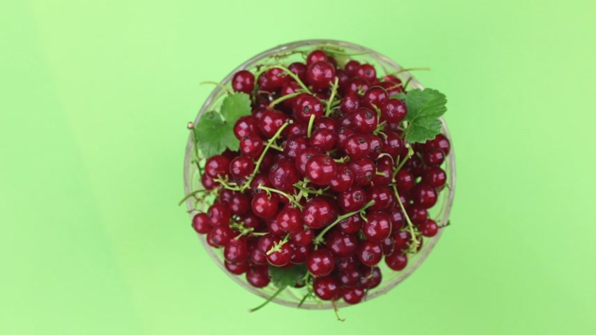 stalk : Top view, rotation of heap of ripe juicy red currants. Isolated. Stock Footage