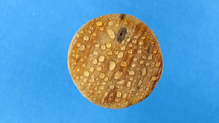 keretében : Top view, rotation of an old wooden round board in raindrops. Isolated Stock mozgókép