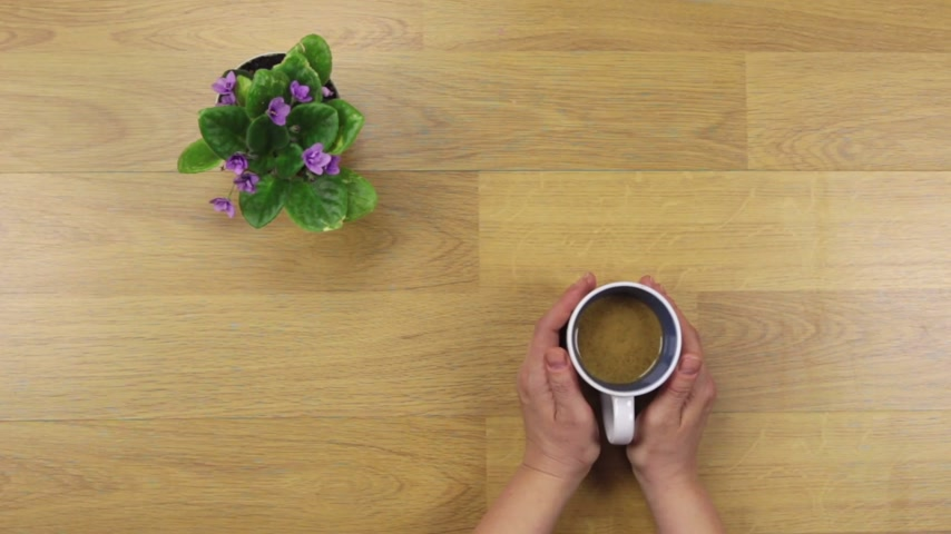 porselen : Female hands holding a cup of coffee with foam over wooden table