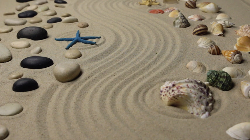 seashell : Refocusing the focus from the seashell to the starfish. Texture of sand Stock Footage