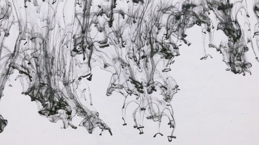 plama : Chaotic movement of drops of black paint in water. Ink in water. Close-up.