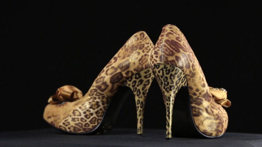 Pair of womens high-heeled shoes. Rotation