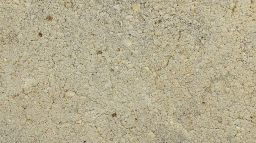 White brick texture, macro close-up detailed, copy space background. Rotation. Stok Video