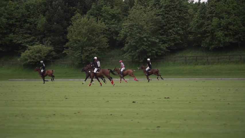 ostor : two teams play together in Polo Stock mozgókép