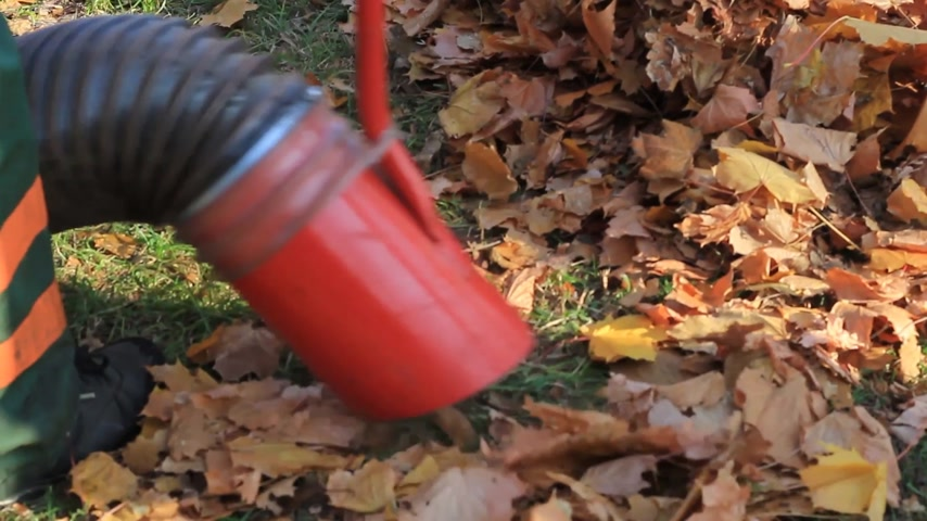 odkurzacz : worker vacuuming fall foliage