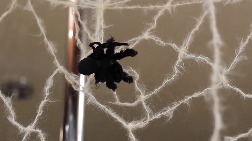 arachnophobia : artificial spider on the web