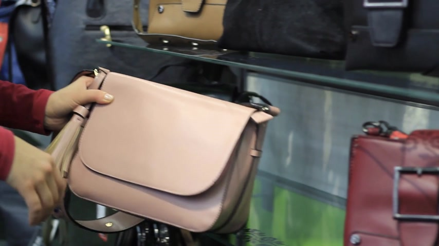showcase : female hands chooses a female handbag in the store