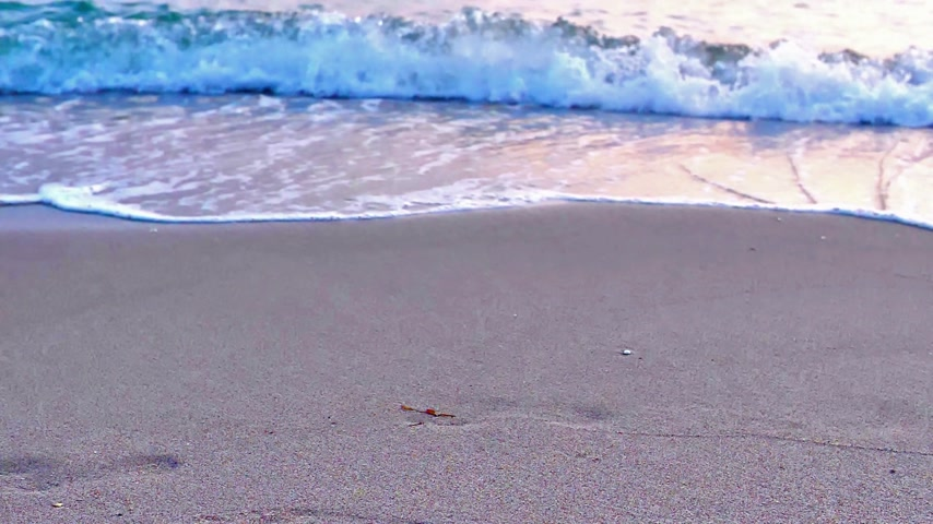 enrolar : beach wave macro slow motion