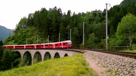 The train passes through the famous Landwasser viaduct in Switzerland.