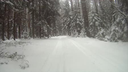 staat : Winter-Straße in den Wald
