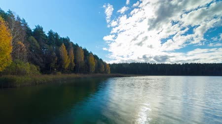 serpenyő : Autumn forest and lake, timelapse panorama Stock mozgókép