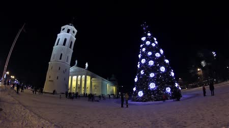 catedral : Christmas tree on Cathedral Square, Vilnius, Lithuania