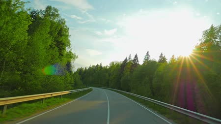 asphalt road : Forest road and the sun Stock Footage
