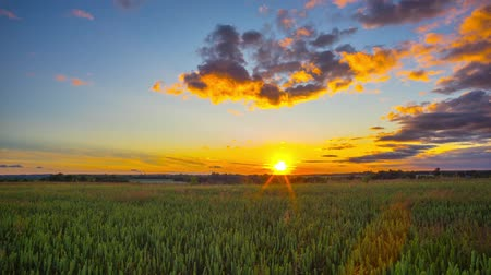 yuvarlanma : Rural landscape and sunset time-lapse Stok Video