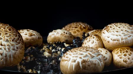 crescimento : The rapid growth of champignons, time-lapse
