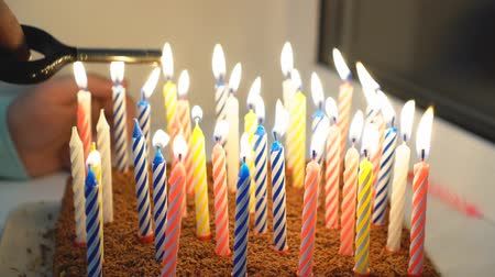 spousta : Birthday cake with many candles