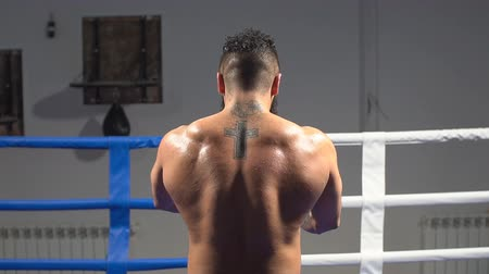 két : Muscular back professional boxer. Portrait of an athlete in the ring. slow motion Stock mozgókép