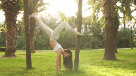 comprimento total : Portrait of fit woman wearing white sportswear working out outdoors, doing yoga or pilates exercise, stretching out leggs in park between palm trees. Full length Stock Footage