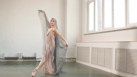 vysoká klíč : Ballet practice. Beaty and grace of female professional ballet dancer on scene during performance. Scenic costume emphasizes the plasticity of movements