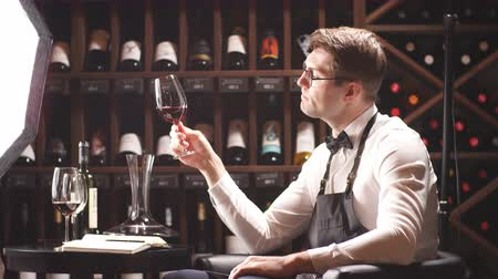 sommelier : Wine degustator man taking notes in winery with wine bottles stacked in rows on the shelves. Bartender writing in notepad information of wine origin and taste.