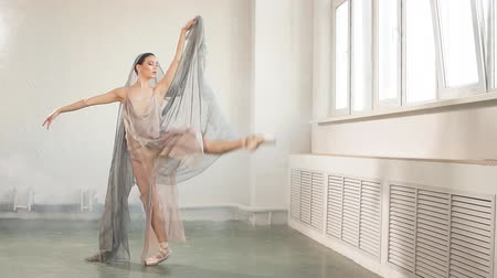 sobre : Young ballerina with a perfect body is dancing in the studio. Ballet dancer dressed in scenic dress, colorful costume emphasizes the plasticity of their movements.